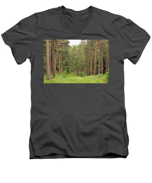 Into The Woods Men's V-Neck T-Shirt by Tony Murtagh