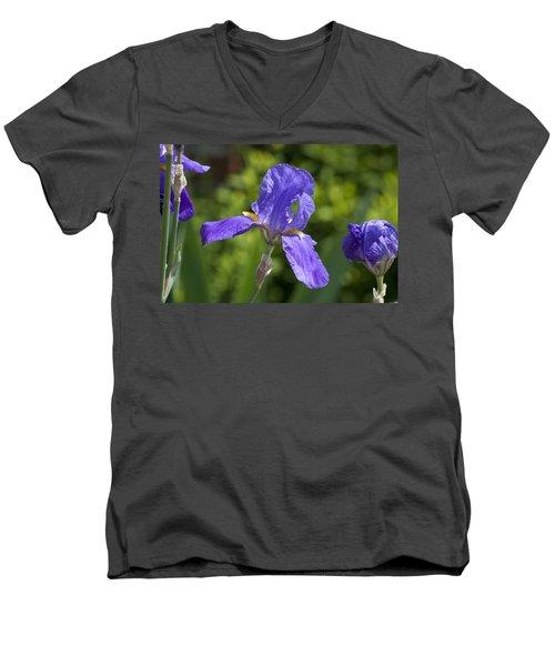 Iris 4 Men's V-Neck T-Shirt by Andy Shomock