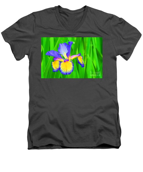 Iris Blossom Men's V-Neck T-Shirt by Teresa Zieba