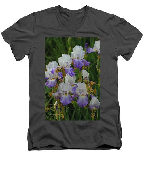 Iris Patch At The Arboretum Men's V-Neck T-Shirt