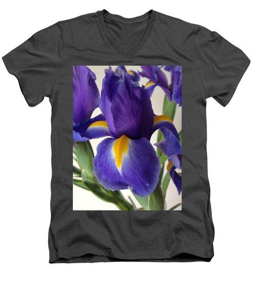 iRus  Men's V-Neck T-Shirt