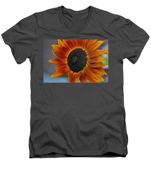 Isabella Sun Men's V-Neck T-Shirt