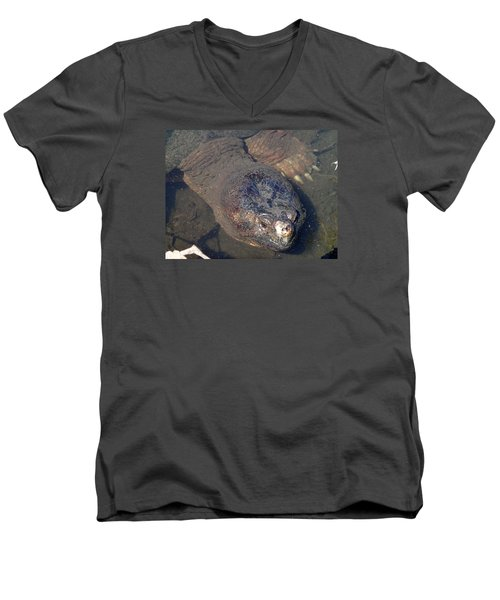 Island Turtle Men's V-Neck T-Shirt