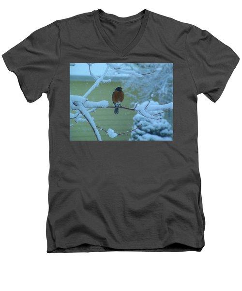 Isn't It Spring Yet? Men's V-Neck T-Shirt