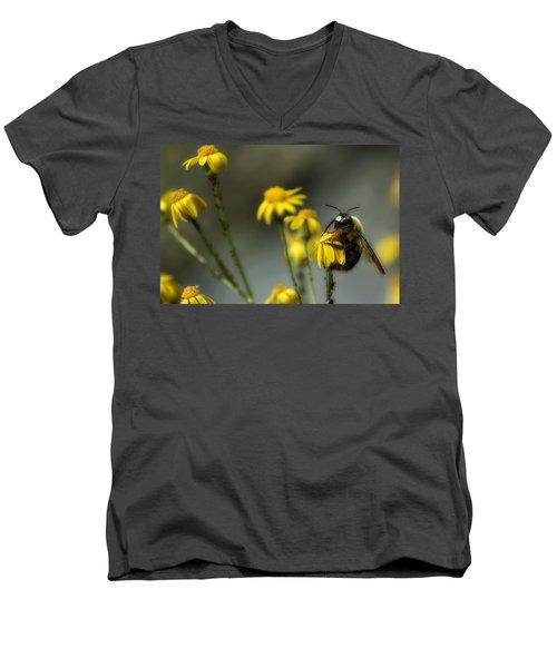 It's Mine-all Mine Men's V-Neck T-Shirt by Michael Eingle
