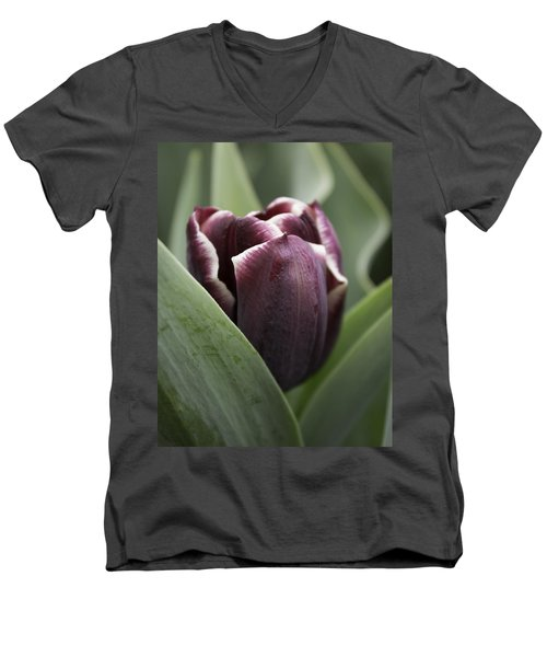 Jackpot Tulip Men's V-Neck T-Shirt by Joseph Skompski