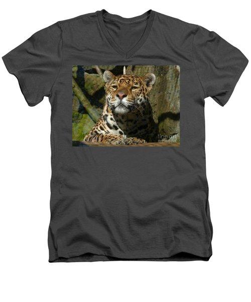 Jaguar Men's V-Neck T-Shirt by Phil Banks
