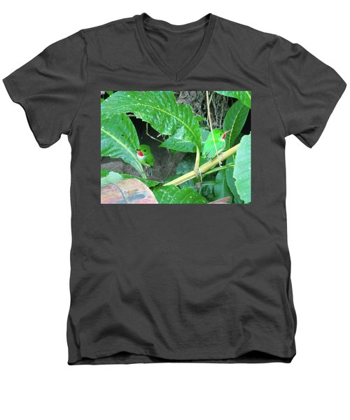 Jamaican Toadies Men's V-Neck T-Shirt by Carey Chen