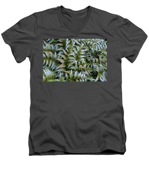 Men's V-Neck T-Shirt featuring the photograph Japanese Ferns by Kathryn Meyer