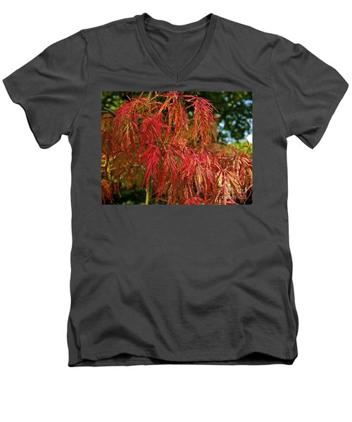 Japanese Maple Men's V-Neck T-Shirt by Linda Bianic
