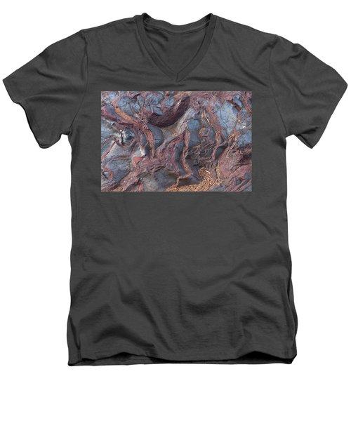 Jaspilite Men's V-Neck T-Shirt by Paul Rebmann
