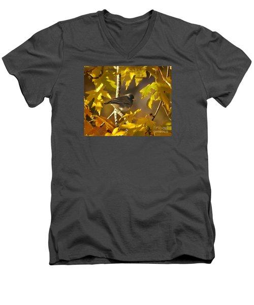 Junco In Morning Light Men's V-Neck T-Shirt by Nava Thompson