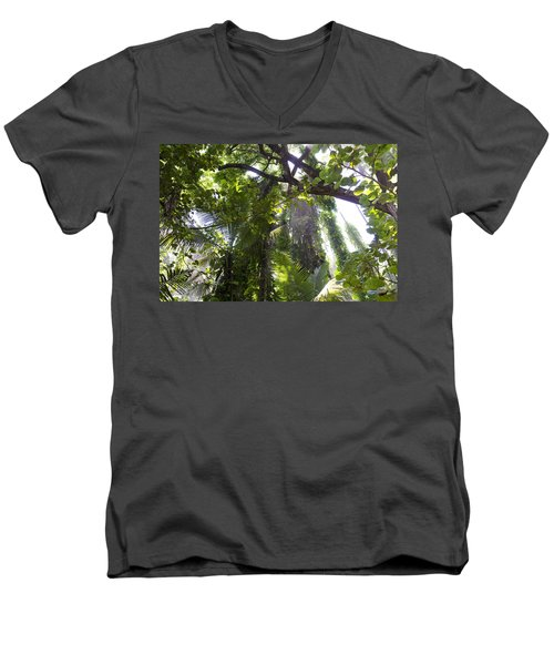 Jungle Canopy Men's V-Neck T-Shirt