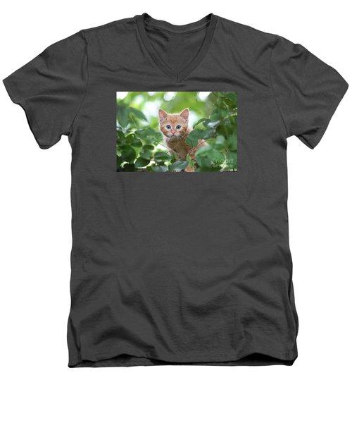 Jungle Kitty Men's V-Neck T-Shirt