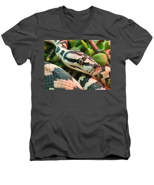 Jungle Python Men's V-Neck T-Shirt