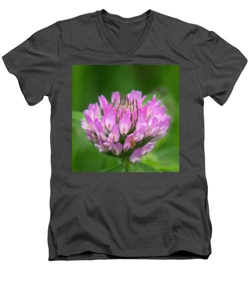 Just Clover Men's V-Neck T-Shirt by Denyse Duhaime