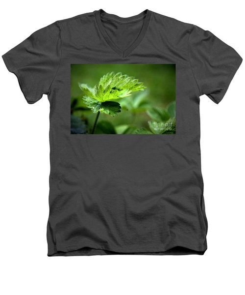 Just Green Men's V-Neck T-Shirt