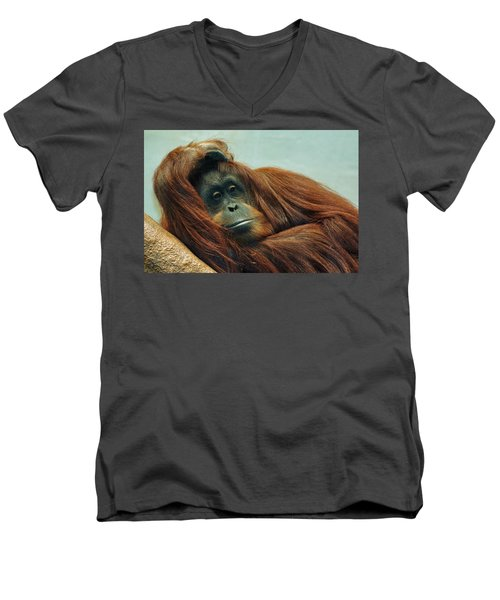 Men's V-Neck T-Shirt featuring the photograph Just Hanging Around by Jean Goodwin Brooks