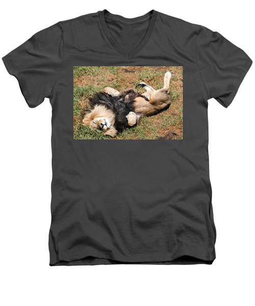 Just Lion Down Men's V-Neck T-Shirt
