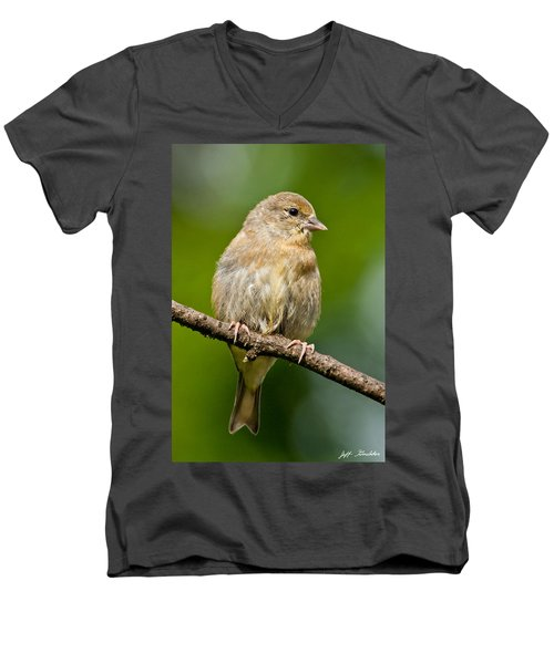 Juvenile American Goldfinch Men's V-Neck T-Shirt