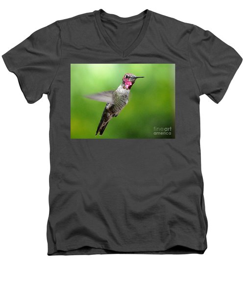 Men's V-Neck T-Shirt featuring the photograph Juvenile Male Anna's In Flight by Jay Milo