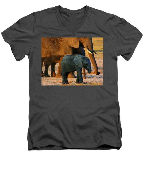 Men's V-Neck T-Shirt featuring the photograph Kalahari Elephants by Amanda Stadther