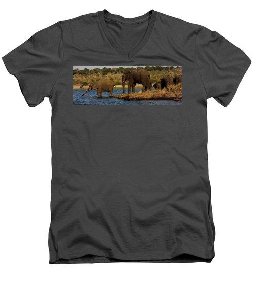 Men's V-Neck T-Shirt featuring the photograph Kalahari Elephants Preparing To Cross Chobe River by Amanda Stadther