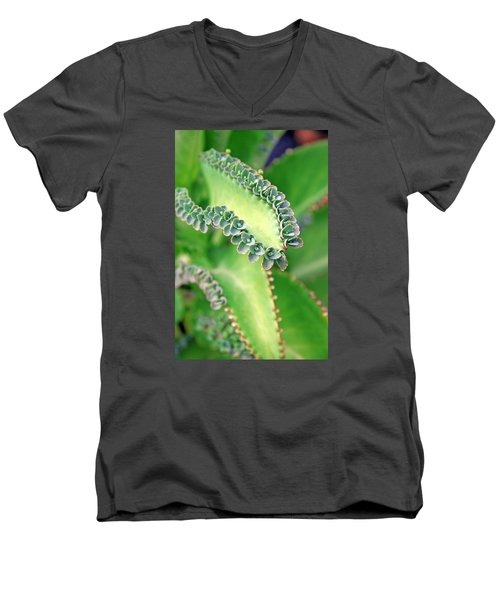 Kalanchoe Men's V-Neck T-Shirt