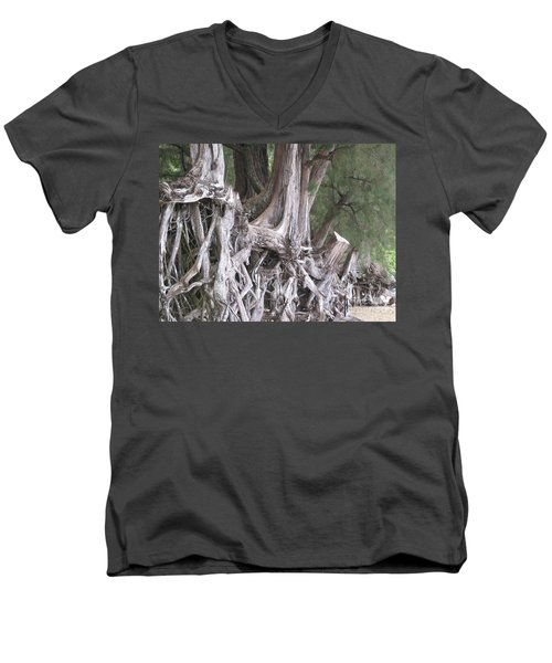 Kauai - Roots Men's V-Neck T-Shirt by HEVi FineArt