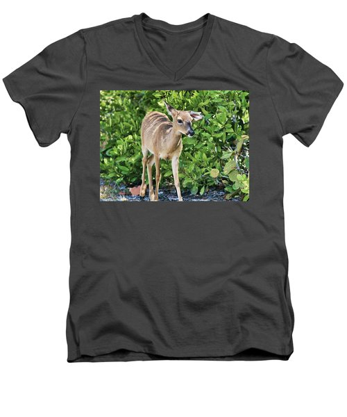 Key Deer Cuteness Men's V-Neck T-Shirt