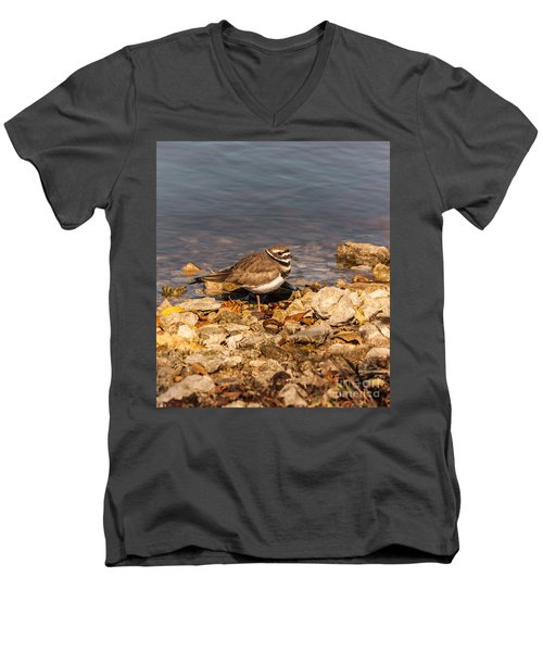 Kildeer On The Rocks Men's V-Neck T-Shirt by Robert Frederick