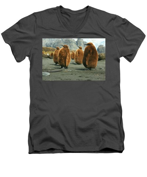 King Penguin Chicks Men's V-Neck T-Shirt