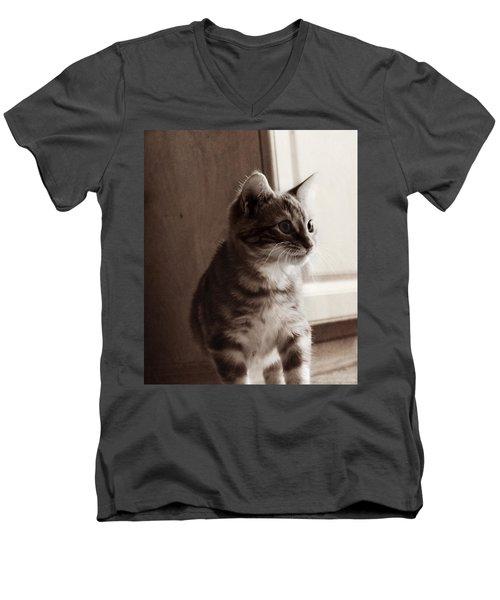 Kitten In The Light Men's V-Neck T-Shirt by Melanie Lankford Photography