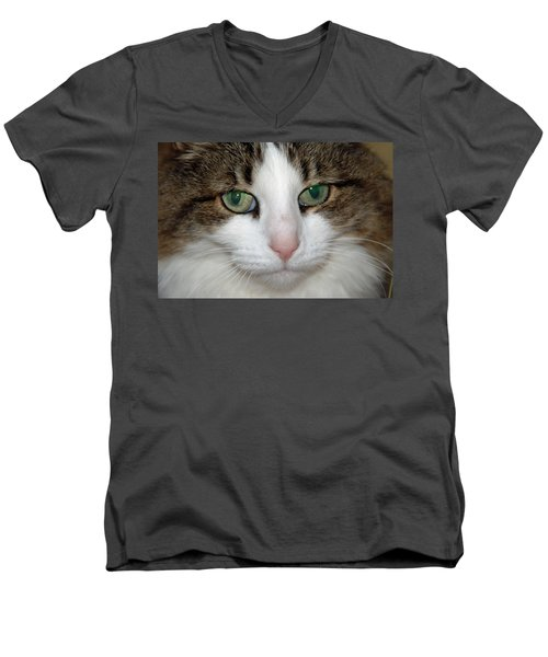 Men's V-Neck T-Shirt featuring the photograph Kitty by Aimee L Maher Photography and Art Visit ALMGallerydotcom