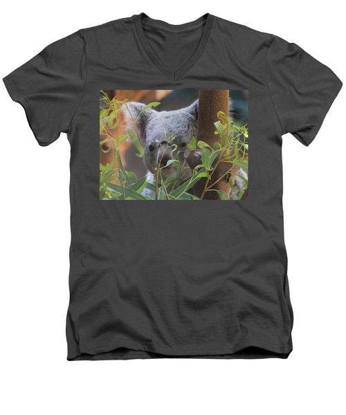 Koala Bear  Men's V-Neck T-Shirt by Dan Sproul