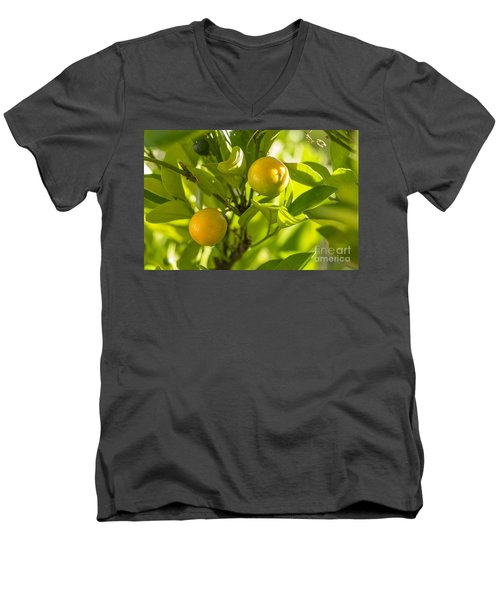 Kumquats Men's V-Neck T-Shirt