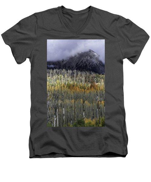 La Sal Seasonings Men's V-Neck T-Shirt