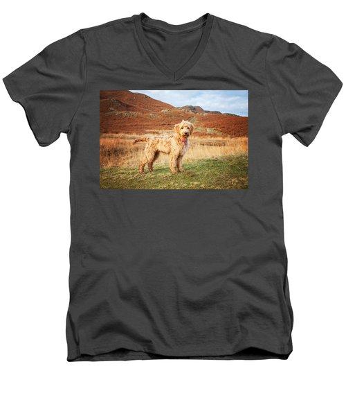 Labradoodle Puppy Men's V-Neck T-Shirt