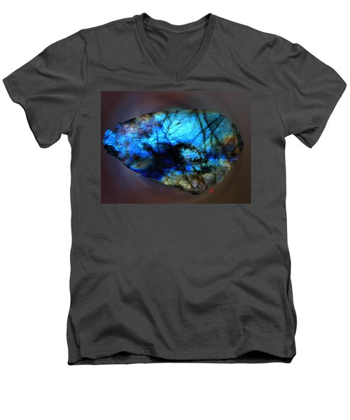 Labrodit Beauty Men's V-Neck T-Shirt