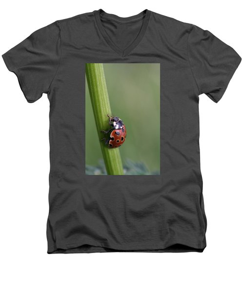 Men's V-Neck T-Shirt featuring the photograph Lady Bird Climbing by Dreamland Media