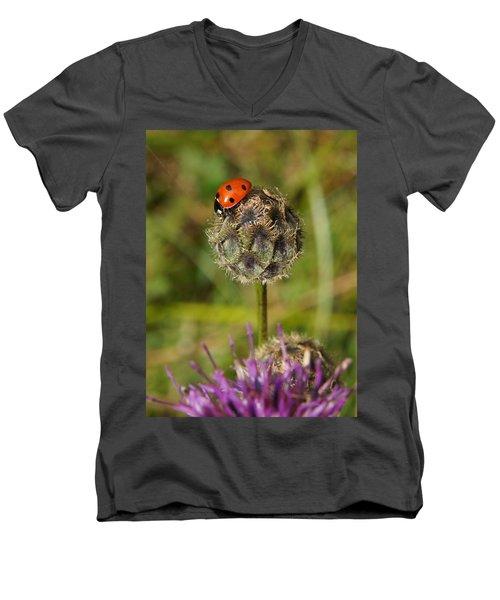 Ladybird Men's V-Neck T-Shirt by Ron Harpham