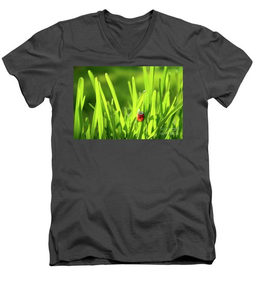 Ladybug In Grass Men's V-Neck T-Shirt by Carlos Caetano