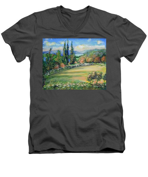 Landscape From Kavran Men's V-Neck T-Shirt