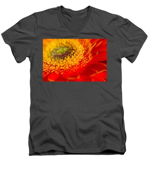 Landscape Of A Flower Men's V-Neck T-Shirt