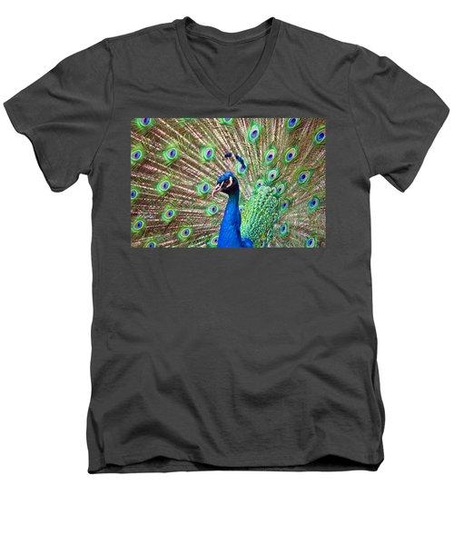 Landscape Peacock Men's V-Neck T-Shirt