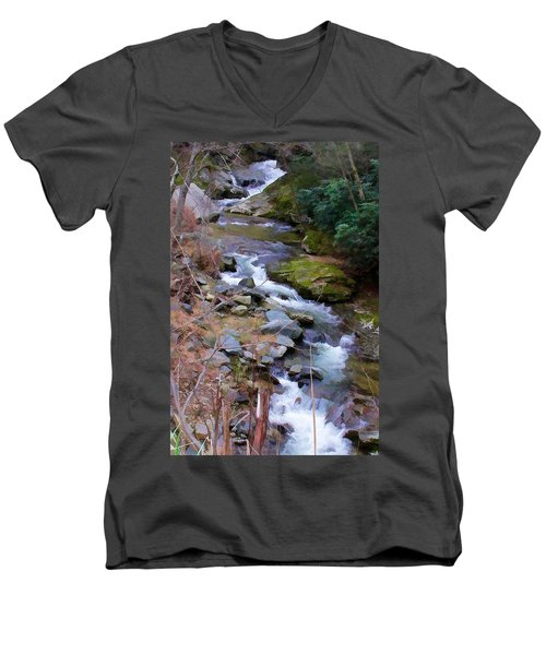 Laurel Creek  Men's V-Neck T-Shirt