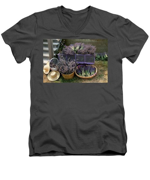Lavender Harvest Men's V-Neck T-Shirt