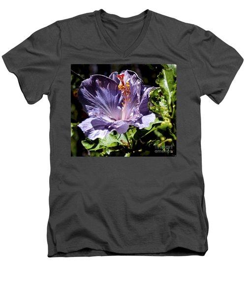 Lavender Hibiscus Men's V-Neck T-Shirt