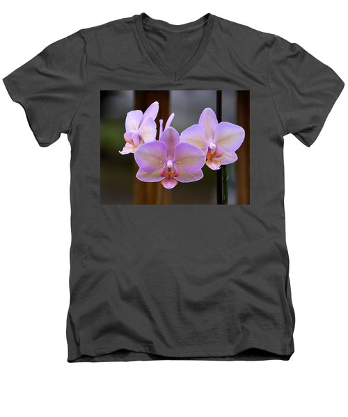 Lavender Orchid Men's V-Neck T-Shirt by Kathy Eickenberg