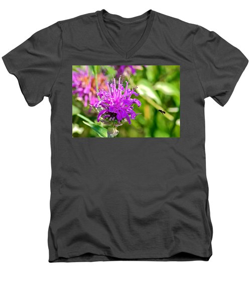 Lavender Pink Bee Balm Wild Bergamot Men's V-Neck T-Shirt by Karon Melillo DeVega